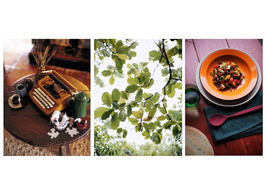 http://marleinoverakker.com/files/gimgs/18_latin-fall-food-page2.jpg